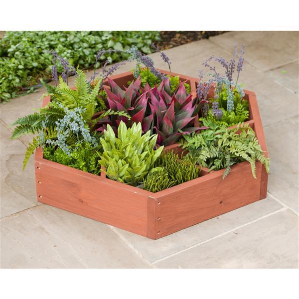 """Planche de jardin en forme de roue, 39"""" x 7"""", cèdre, brun"""