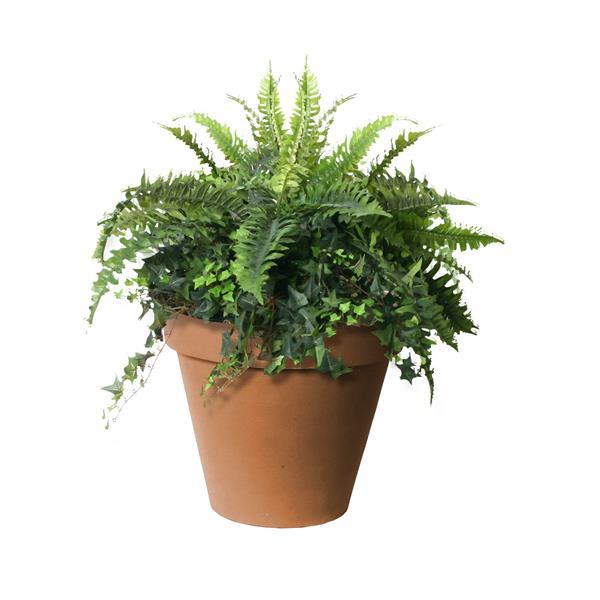 "Algreen Products Classico Self-Watering Planter - 20"" x 16.5"" - Terracotta"