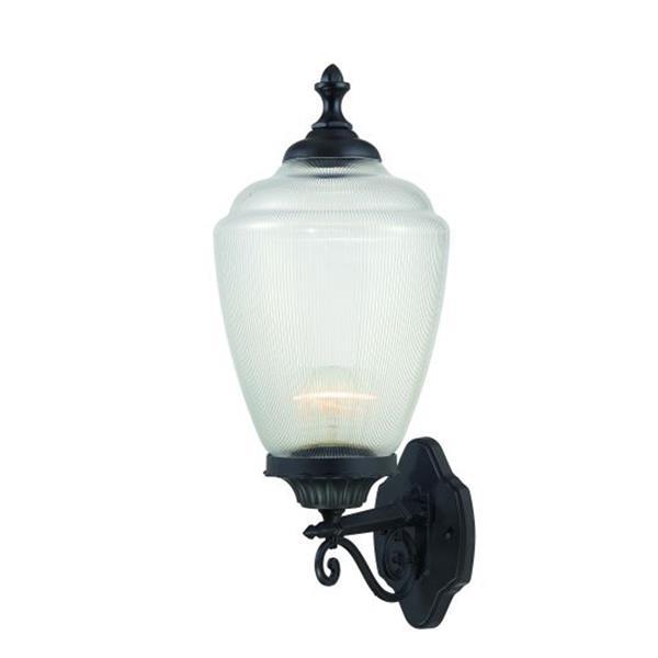 """Lanterne murale à 1 lumière Acorn, 9"""" x 22,5"""", noir"""