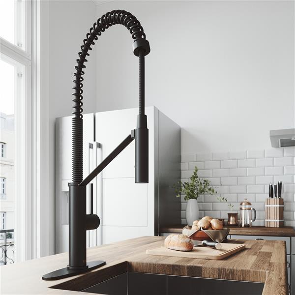 VIGO Livingston Magnetic Kitchen Faucet With Deck Plate