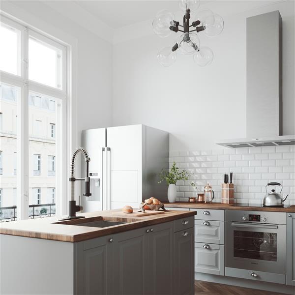 Vigo Edison Pull Down Spray Kitchen Faucet With Deck Plate Vg02001stmbk1 Reno Depot