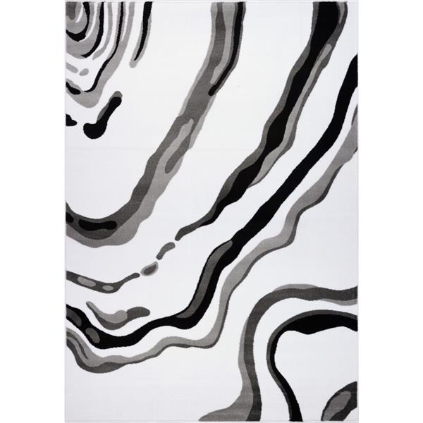 Tapis abstrait moderne «Calvin», 7' x 10', blanc/noir