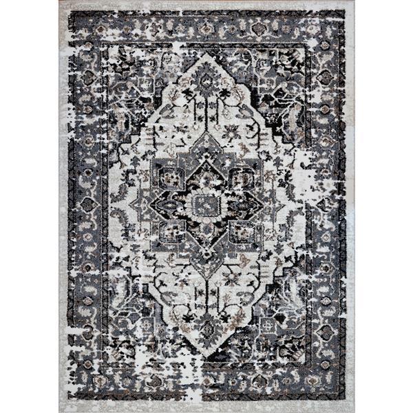 Tapis abstrait contemporain «Hanuama», 4' x 6', gris/crème