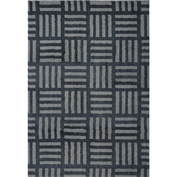 Tapis abstrait Oknagon, 5,3' x 7,5', microfibre, gris