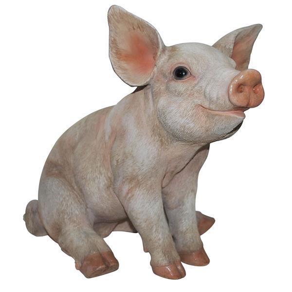 Moyen statue de cochon assis, multicolore