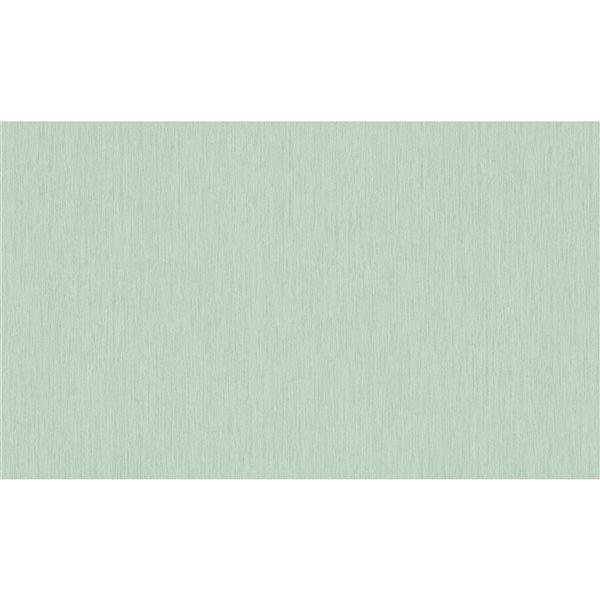 Papier peint en vinyle non encollé abstrait et texturé Bonaire par Advantage couvrant 57,8 pi², vert pâle
