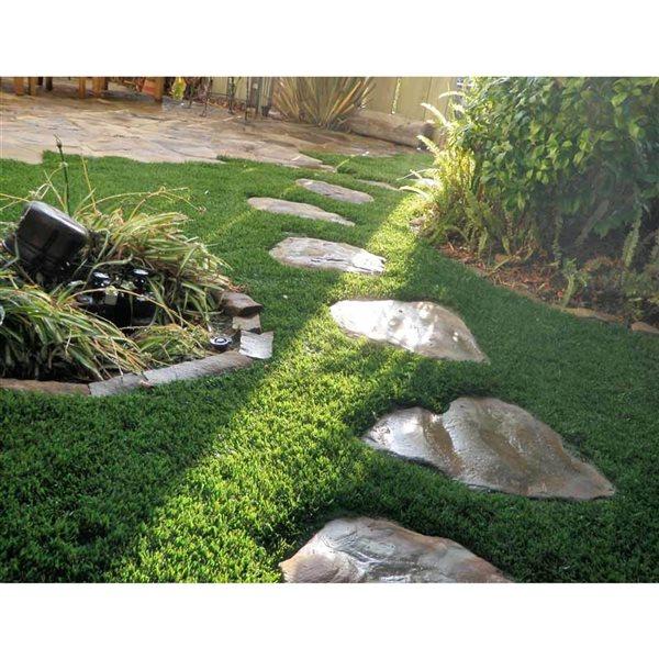 Tapis d'herbe artificielle Fescue de Green As Grass, 25 pi x 15 pi