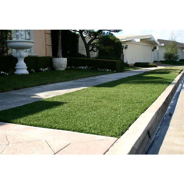 Tapis d'herbe artificielle Fescue Green As Grass, 25 pi x 15 pi